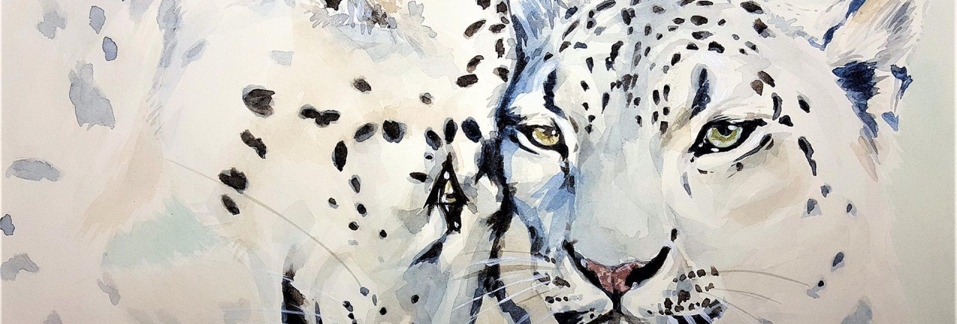 Artist Animal Advocacy O4icbr553wuemmibpxvcoswftn1ro4qutn0zrh5c2s