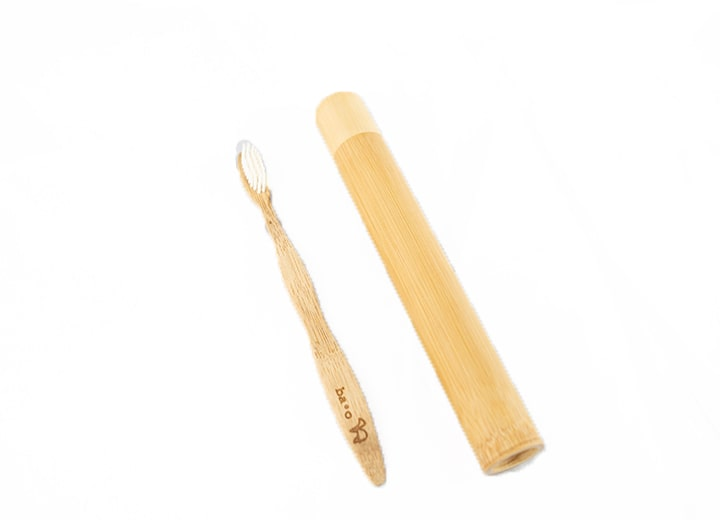 Bamboo Toothbrush With Case 1 Min 1